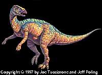 ART- www.search4dinosaurs.com
